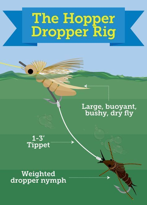 Try Multiple Fly Rigs for Trout Fishing: Tandem Nymph, Hopper
