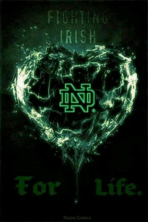 """Yep...good times and bad times!!! Like the Irish?  Be sure to check out and """"LIKE"""" my Facebook Page https://www.facebook.com/HereComestheIrish  Please be sure to upload and share any personal pictures of your Notre Dame experience with your fellow Irish fans!"""