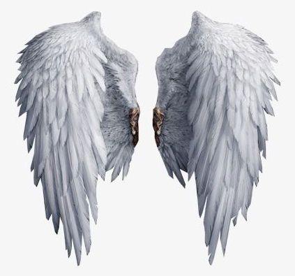 Angel Magic Wings Gambar Sayap Gambar Sayap