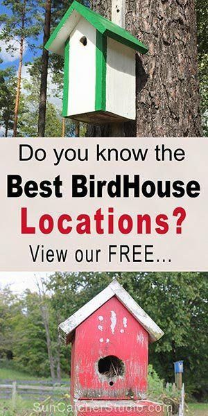 How To Hang A Birdhouse Including Tips On Placement Suitable Nesting Locations And Mounting A Bird House Birdhouse Bird House Bird House Kits Bird Houses