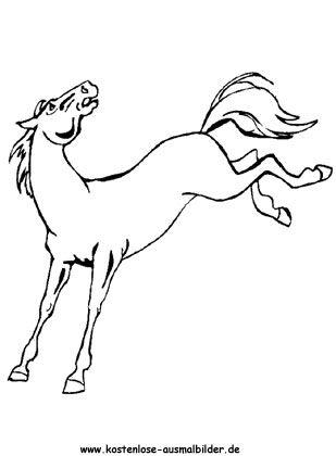Ausmalbild Pferd 16 Kostenlos Ausdrucken Ausmalbilder Pferde Ausmalbilder Pferde Zum Ausdrucken Ausmalbilder