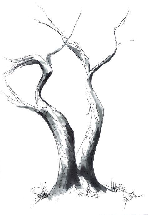 Cali Tree Sketch 2