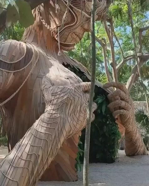 Looking for the best places to visit, We have some suggestions for you. It's the best time to visit Tulum in Mexico. It's full of beautiful and historic creatures. #music #rave #tulum #tulummexico #technomusic #technodance #gorconcity #housemusic #techhouse #underground #melodictechno #technolovers #boilerroom #burningman #ahautulum #solomun #travel