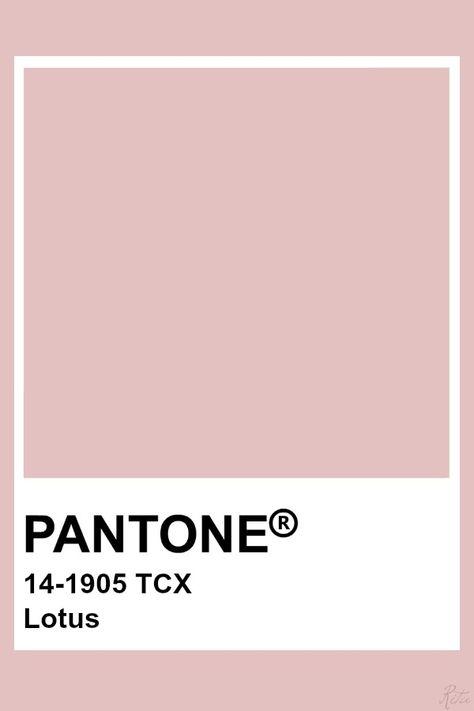 Pantone Lotus