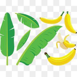Leaves Banana Banana Clipart Green Leaves Yellow Png Transparent Clipart Image And Psd File For Free Download Leaf Illustration Banana Green Banana