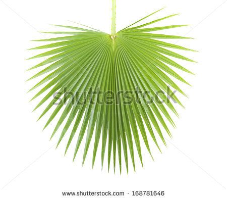 Abstract Images, Stock Photos & Vectors