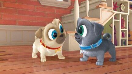 Watch Puppy Dog Pals Tv Show Disney Junior On Disneynow Disney Junior Dogs And Puppies Puppies