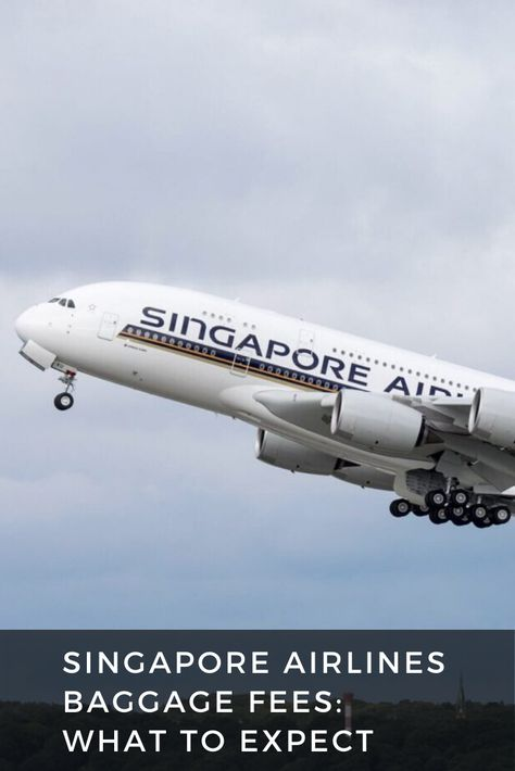 Singapore Airlines Baggage Fees 2020 What To Expect Singapore Airlines Singapore Changi Airport Singapore