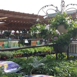Image Result For Armstrong Garden Center Pay How Much Do Armstrong