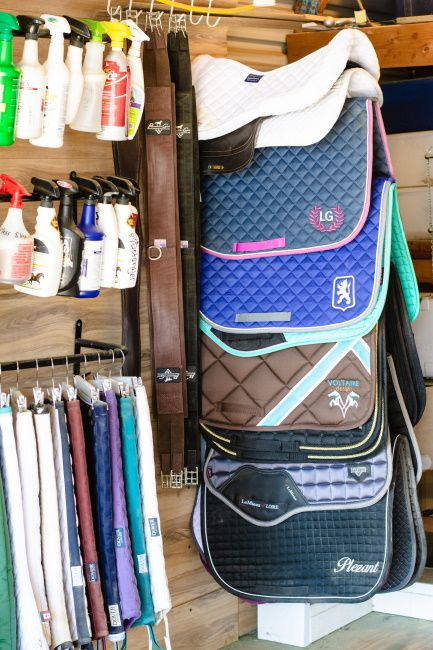 The Real Secret to an Organized Tack Room - Budget Equestrian Tack Shed Ideas, Tack Room Organization, Tack Locker, Small Horse Barns, Horse Tack Rooms, Horse Barn Designs, Tack Box, Horse Gear, Horse Tips