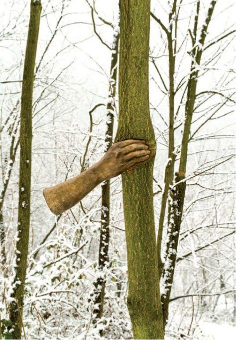 Giuseppe Penone  – Il poursuivra sa croissance sauf en ce point. 1968, oeuvre installée en 2000, © Archivio Penone