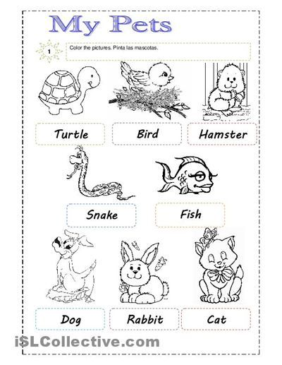 Kindergarten Pet Worksheets 185600 In 2020 Animal Worksheets Worksheets For Kids Pets Preschool