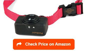 Petsafe Citronella Bark Collar The Petsafe Citronella Bark Collar
