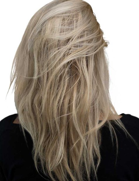 Long Hair Style Trends & Inspiration for Women