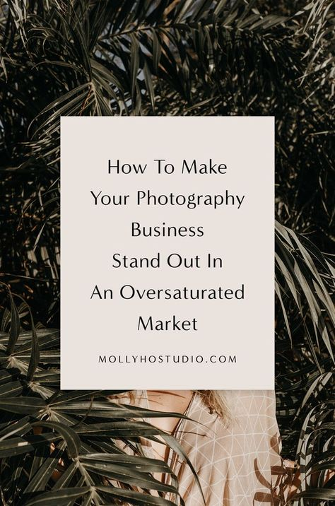 How To Make Your Photography Business Stand Out In An Oversaturated Market — molly ho studio