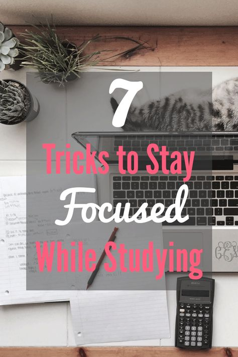7 Tricks to Stay Focused While Studying - Society19