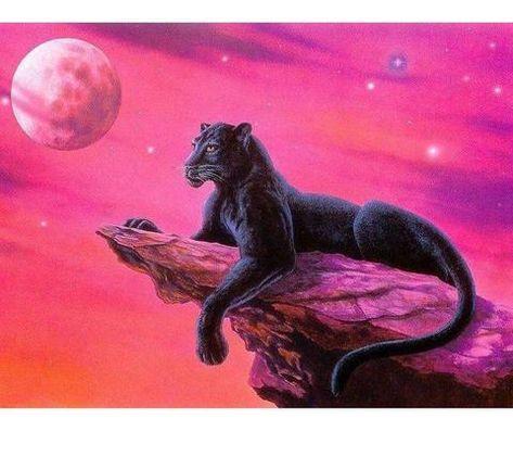 Black Cheetah 5D DIY Paint By Diamond Kit