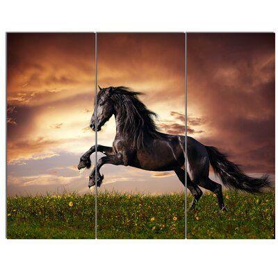 Image by Shutterstock Beautiful Black Friesian Horse Women/'s Tee