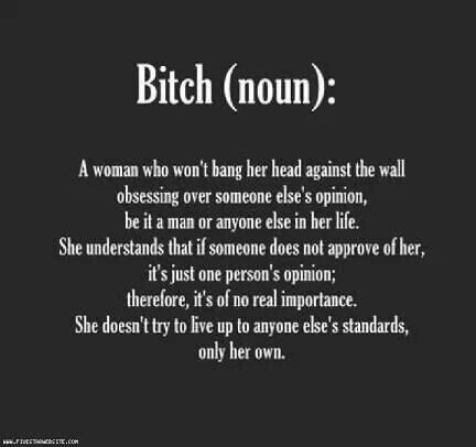 Quotes About Being A Bitch Pleasing I Love Being A Bitch  Quotes I Love  Pinterest  Truths