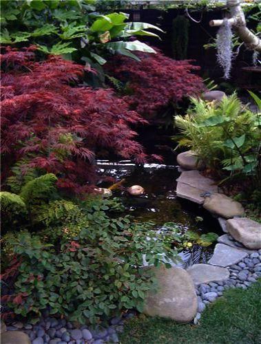 Garden Landscaping Rochdale Garden Landscape Design Ideas Uk Its Landscape Garden Design Farnham Jardin D Eau Idee Amenagement Jardin Jardin Japonais