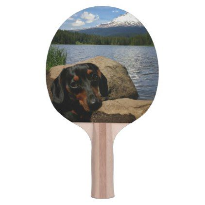 Mt Hood Ping Pong Paddle Zazzle Com Dogs Cool Pets Love Pet