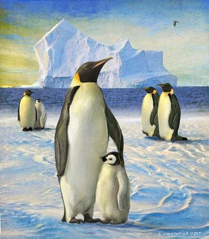Penguins By Chris Vest Penguins Painting Prints Removable Wall Decals