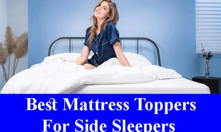 Best Feather Mattress Toppers Reviews 2020 All Time Reviews Best Mattress Mattress Topper Mattress Topper Reviews