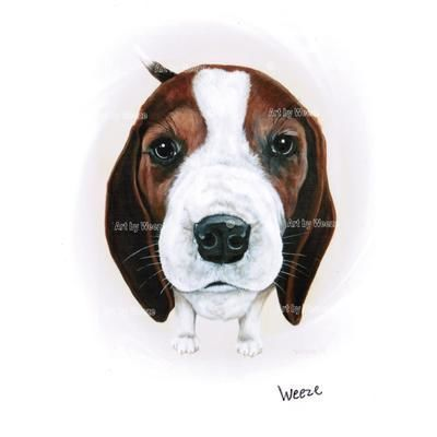 Beagle Print Many Custom Dog Breed Prints Available Matted And