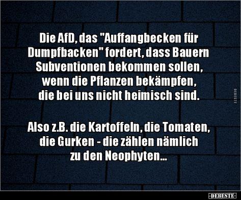 """Die AfD, das """"Auffangbecken für Dumpfbacken"""" fordert, dass.."""