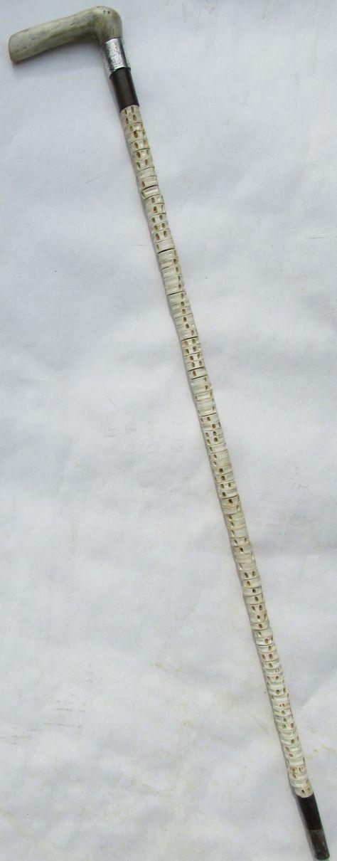Superb Fish Vertebra and Ivory Walking Stick Chester Silver Hallmark 1890