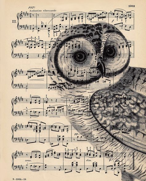 owl printed on top of sheet music . idea from Dishfunctional Designs: Upcycled Sheet Music Crafts . the image is translucent to the musical score shows through .