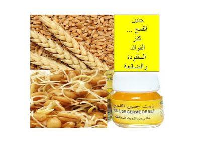 جنين القمح كنز الفوائد المفقودة والضائعة Wheat Germ Wheat Bread