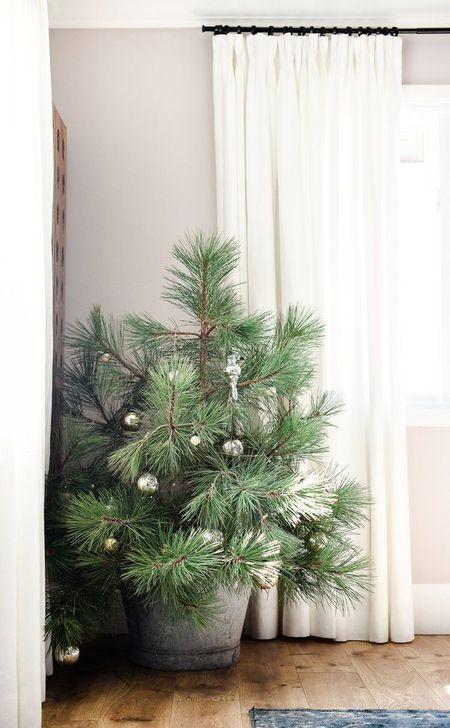 Christmas Home Tour Part 1 Christmas Tree Design Christmas Tree Themes Christmas Decorations Rustic Tree