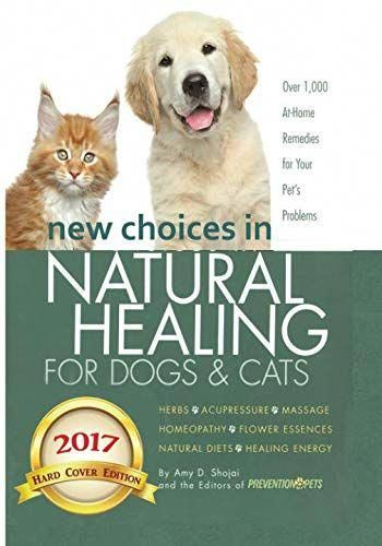 Esteemed Healthy Dog Food Investigate This Site Dogs Dog Advice Tortoise As Pets