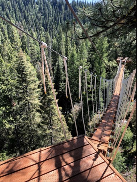 Walk among the treetops and surround yourself in complete beauty when you take up this lovely canopy walk in our state. The Places Youll Go, Places To See, West Coast Trail, Utah Hikes, Colorado Hiking, Adventure Tours, Adventure Awaits, North Cascades, Ice Climbing