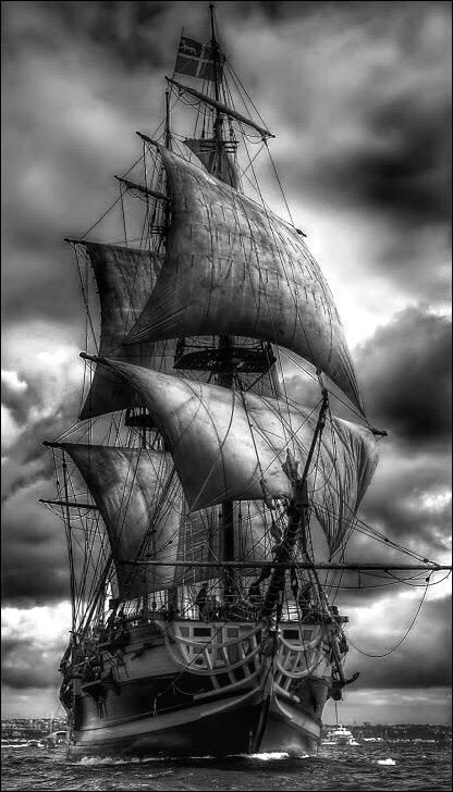 Tall Ships and Sailing Tall Ships, Bateau Pirate, Old Sailing Ships, Ghost Ship, Black Sails, Ship Art, White Photography, Scenery, Ocean