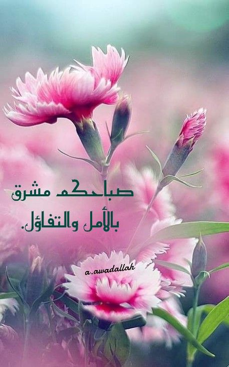 Pin By A Awadallah On صباح ومساء Good Morning Quotes Good Morning Morning Images