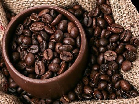 Margaret D. Gibson on Twitter | Coffee plant, Brazilian coffee, Coffee farm