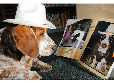 Welcome to Edgemont Library -- Porter likes to read too!