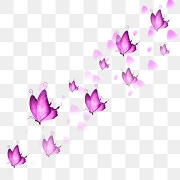 Pink Butterfly Rose Petals Floating In The Float Butterfly Flying All Over Thepink Png Transparent Clipart Image And Psd File For Free Download En 2020 Flores Para Dibujar Flores De Dibujos