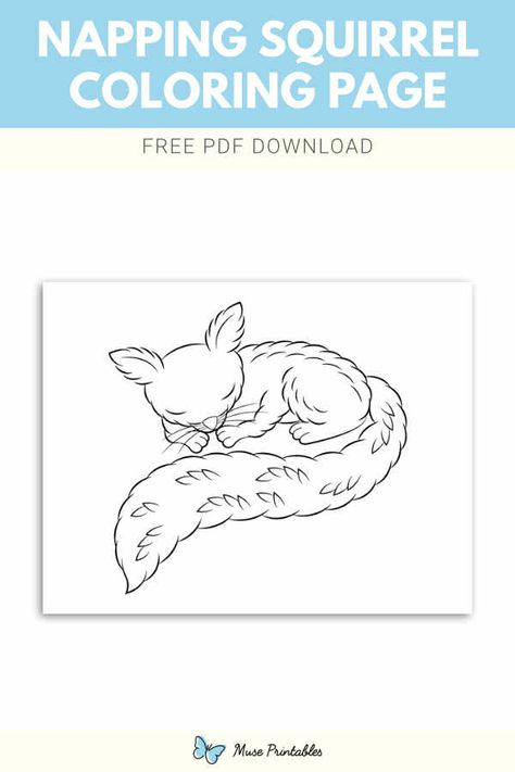 Free Napping Squirrel Coloring Page Squirrel Coloring Page Coloring Pages Squirrel