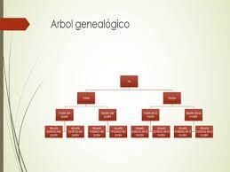 9 Ideas De Arbol Genealogico Arbol Genealogico Arbol Genealogico Imagenes Arboles