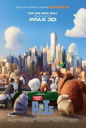 The Secret Life Of Pets 2016 Poster Filme Pets Filmes Animados