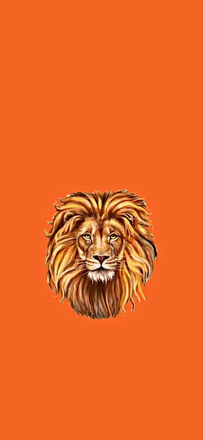 افضل خلفيات شاومي ريدمي نوت9 و 9 اس Xiaomi Redmi Note 9 9s Wallpapers Wallpaper Animal Tattoo Animals