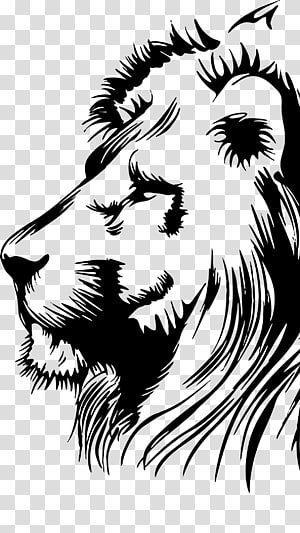Black Lion Illustration Lionhead Rabbit Drawing Leon Transparent Background Png Clipart Lion Illustration Lion Stencil Lion Painting
