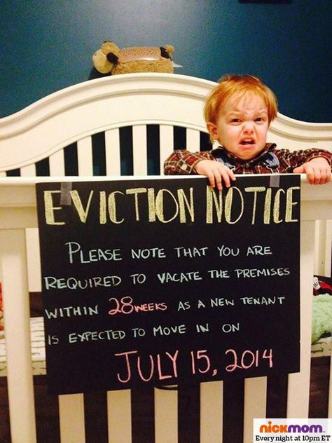 fun diy baby announcement   pregnancy announcement diy gifts + - eviction notice