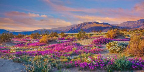 9 Amazing Alternatives to National Parks