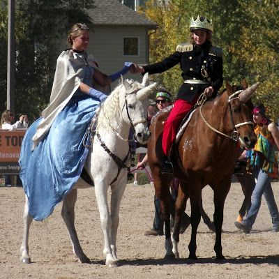 Horse Fancy Dress Ideas: Cinderellla and Prince Charming