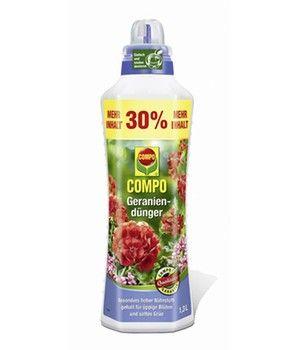 Geranien Online Kaufen Bestellen Bei Baldur Garten Geranien Sommerblumen Winterharte Geranie