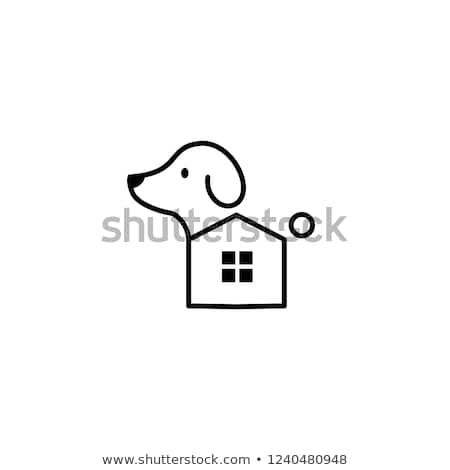 Essential Oils For Animals In 2020 Tick Bites On Dogs Home Remedies For Fleas Tick Treatment For Dogs